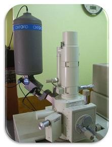 บริการเครื่อง SEM HV Mode+EDS (High vacuum)