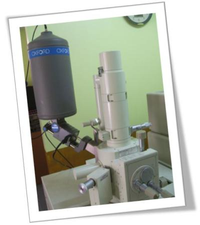บริการเครื่อง SEM LV Mode+EDS (Low vacuum)