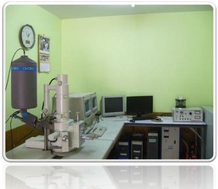 กล้องจุลทรรศน์อิเล็กตรอนไมโครสโคป