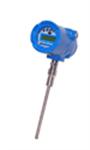 เครื่องมือวัดการไหล Thermal Mass Flowmeter 9800MP