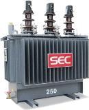 หม้อแปลงไฟฟ้า 250kVA 3 Phase
