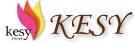 logo-kesy.png