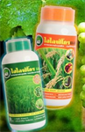 สารอาหารพืชและปุ๋ย ปลอดสารพิษ