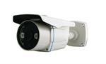 กล้องวงจรปิด CCTV ECO BK-A621iU