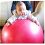 บอลฝึกการทรงตัว Exercise Ball