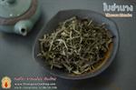 ชาสมุนไพร ใบย่านาง 1 Kg.
