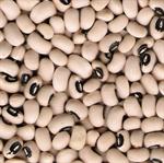 ถั่วตาดำ Black eye bean