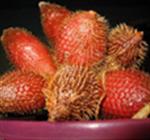 ผลไม้ Fruits