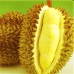 ทุเรียน Durian