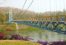 สะพานแขวน (Cable Bridge)