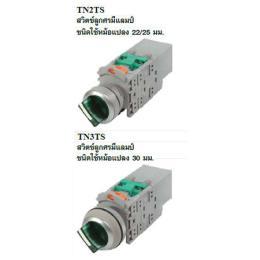 Illuminated Selector Switch TN2TS/TN3TS