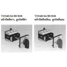 เมนสวิตซ์  TDS40/66/80-BSB/TDS40/66/80-BSR