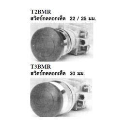 สวิตซ์กดจม T2BMR/T3BMR