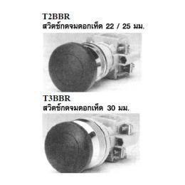 สวิตซ์กดจม T2BBR/T3BBR