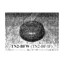 ฝาครอบกันน้ำ TN2-BFW (TN2-BF/IF)