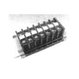 เทอร์มินัล  TBRN-20-10 10P 20