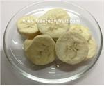 กล้วยฟรีซดราย (FD104)