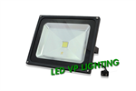 LED IWACHI Flood Light 50W.