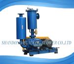 HDLH-V series vacuum pump blower