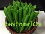 ใบพลูทำจากดินไทย