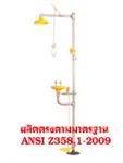 Emergency Eyewash and Shower