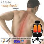 เก้าอี้เพื่อสุขภาพ Harachair เก้าอี้ที่ปกป้องกระดูกสันหลังของคุณ (ERGONOMIC CHAIR)