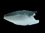 ปลาบุรี แบร์นอองซุย