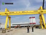 Eurocrane Container Gantry Crane Double Girder Rail Mobile Container
