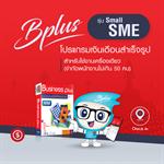 Bplus HRM Small SME ชุด PR