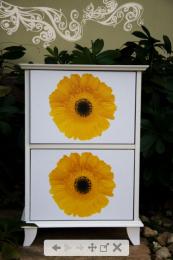 ตู้อเนกประสงค์ Flora box coll ection 13