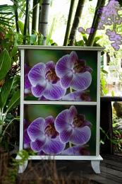 ตู้อเนกประสงค์ Flora box collection 10