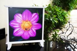 ตู้อเนกประสงค์ Flora box collection  2