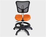 เก้าอี้เพื่อสุขภาพ รุ่น WOOLYKID