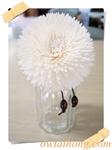 ก้านดูดน้ำหอมดอกเยอบีร่าใหญ่ (DFS010)