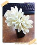 ก้านดูดน้ำหอมดอกเงาะ (DFS005)
