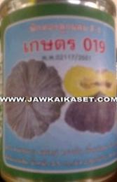 เมล็ดพันธุ์ฟักทองลูกผสมเกษตร019
