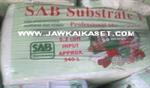 ดินเพาะกล้า SAB Substrate1