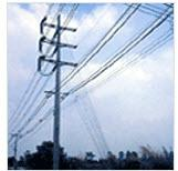 ลวดเหล็ก LT. Overhead ground wire strand
