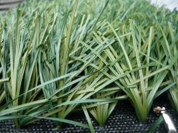 หญ้าเทียม - GSF-P615 (FIFA)