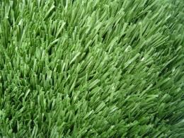 หญ้าเทียม - GL 1