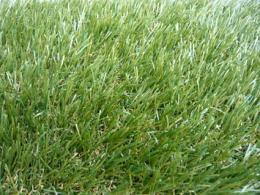 หญ้าเทียม - GL X425