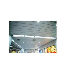 C,C1 Series Strip Ceiling