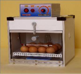 ตู้ฟักไข่ และตู้เกิด