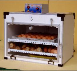 ตู้ฟักไข่ ( 35 ฟอง ) และตู้เกิดในตู้เดียวกัน ( 35