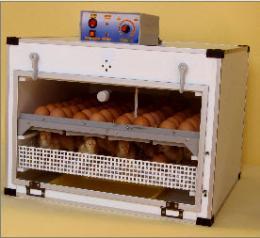 ตู้ฟักไข่ ( 72 ฟอง ) และตู้เกิดในตู้เดียวกัน ( 72