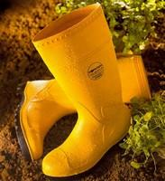 รองเท้าบู๊ต Boots