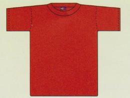 เสื้อคอกลมแขนสั้นผู้ใหญ่ TC-001\R