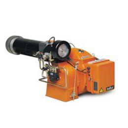 เครื่องพ่นไฟ-BT DSPG