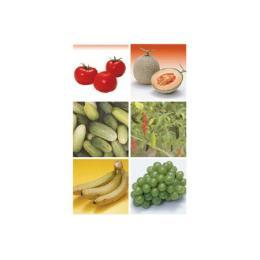 น้ำยาล้างผักและผลไม้ Posthavest P0020