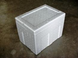 กล่องโฟม (Foam Box & Picnic Box)